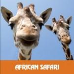 アフリカンサファリ1
