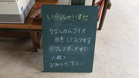 ぶどう園14