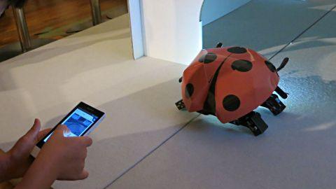 ロボット博6